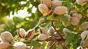 Foto de El cultivo de frutos secos, una apuesta rentable