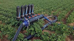Foto de El riego por goteo en cultivo de patata industrial, ventajas a nivel agronómico e industrial