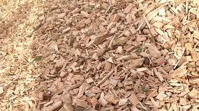 Foto de La biomasa evitó la emisión de 3,68 millones de toneladas de CO2 en 2016