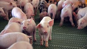 Foto de El IRTA-CReSA ha sido designado como centro colaborador y de referencia de la Organización Mundial de Sanidad Animal