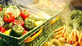 Foto de Ya está disponible el informe completo de tendencias 'Comercio hortofrutícola 2025' comisionado por Fruit Logistica