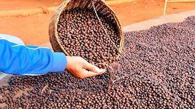 Picture of Tendencias y desafíos mundiales en la producción de alimentos