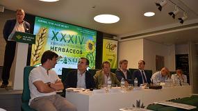 Foto de El trigo y el girasol andaluz tienen futuro si el sector es capaz de marcar una estrategia de diferenciación