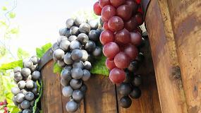 Foto de La campaña vitivinícola terminó con 31,9 millones de hectolitros de existencias