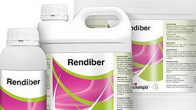 Foto de Rendiber, el nuevo producto para aumentar la producción, concentración y calidad de los berries de Grupo Agrotecnología