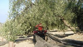 Foto de Reclaman una homologación que facilite el uso de los quads en trabajos agrícolas