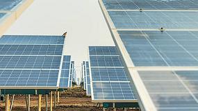 Foto de Los ahuyentadores BirdGard protegen los paneles solares de los pájaros