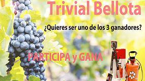 Foto de Ferrokey organiza el 'Trivial Bellota' y sortea 3 kit de jardín Bellota