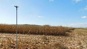 Picture of Cada agricultor regante alimenta a una media de 155 personas al año, según Fenacore