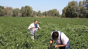 Fotografia de Cicytex organiza una jornada sobre Tecnologías para la Gestión del Riego y la Fertilización