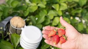 Foto de Bosch presenta soluciones inteligentes para optimizar la gestión de los cultivos