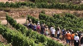 Foto de Lleida se posiciona como destino turístico del vino y la gastronomía a través de la Ruta del Vino de Lleida