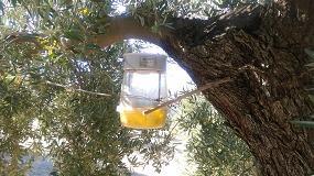 Foto de Presentan Entomatic, un método autónomo de recuento y control de la mosca del olivo con un sistema bioacústico
