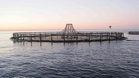 Picture of Andalucía apoya con 8,3 M€ once proyectos de acuicultura marina