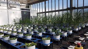 Foto de Apertura del laboratorio conjunto de Valagro y Alsia en el Centro de Investigación Metapontum Agrobios