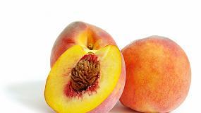 Foto de Tomra Sorting Food se prepara para el crecimiento en frutas exóticas