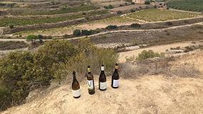 Picture of Terra Alta, capital de la Garnacha en 2018