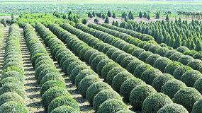 Fotografia de A partir de diciembre de 2019, se requerirá el pasaporte fitosanitario en todas las partidas de plantas dentro de la UE
