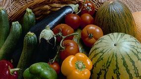 Foto de Cae la cuota de mercado de España en el comercio intracomunitario de frutas y hortalizas