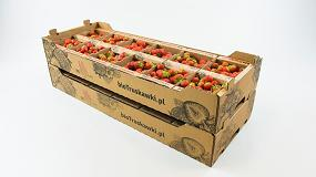 Picture of Smurfit Kappa incrementa las ventas de un cliente en un 50% gracias a un innovador embalaje para frutas