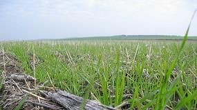 Foto de Premiado el proyecto LIFE+Agricarbon por su aportación a la lucha contra el cambio climático