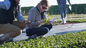 Fotografia de 150 asistentes acuden al Spinach International Day