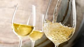 Foto de Estrategias enológicas para la prevención del gusto de luz en vinos blancos