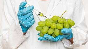 Foto de Control de calidad de la uva mediante visión avanzada