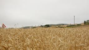 Foto de Copa y Cogeca reclaman igualdad en el mercado europeo de los fertilizantes
