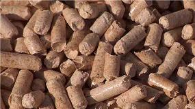 Foto de La biomasa nacional podría incrementar su producción eléctrica un 23%