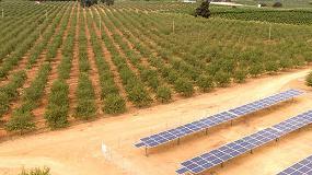 Foto de Powen instala en la provincia de Sevilla un nuevo sistema de bombeo solar para regadío