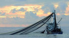 Foto de Opagac apunta que la sostenibilidad del atún tropical pasa por la distribución y la capacidad de elegir del consumidor