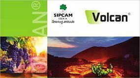 Foto de Sipcam Iberia lanza una herramienta para el control de las malas hierbas y los rebrotes en el viñedo