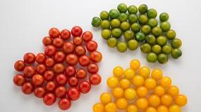 Foto de Alimentaria 2018 acoge la presentación de estas tres marcas que buscan revolucionar la concepción gastronómica de los tomates