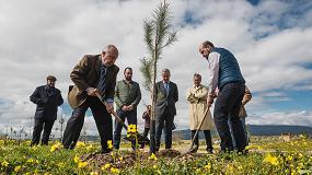 Picture of Los 1.000 nuevos árboles del Séptimo Bosque Sigaus crecen ya en Colmenar Viejo