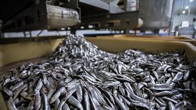 Foto de El sector de los productos de la pesca y la acuicultura en España