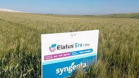 Foto de Syngenta muestra en campo los resultados de su fungicida Elatus Era