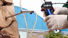 Foto de El sistema TreeCare de Syngenta, ejemplo de sostenibilidad y cuidado del medio ambiente en la lucha contra el picudo rojo de las palmeras