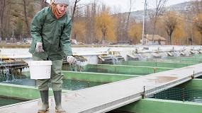 Foto de Consumir pescado de piscifactorías europeas no supone un riesgo para la salud