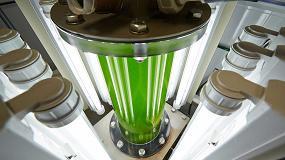Foto de Economía Circular y obtención de productos para las industrias químicas, energéticas y agropecuarias a partir de microalgas