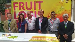 Foto de Fruit Logistica acerca los mercados de Oriente Medio y Alemania al sector de berries español en el IV Congreso Internacional de Frutos Rojos