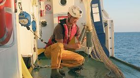 Foto de La sostenibilidad triunfa y el stock de la anchoa en el golfo de Bizkaia está en su mejor momento