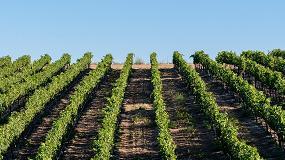 Foto de Últimos avances tecnológicos en la aplicación de productos fitosanitarios en viticultura