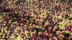 Foto de UPA propone que la PAC regule la cadena agroalimentaria para evitar crisis y abusos