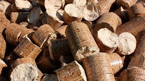 Foto de Biomasa y geotermia: soluciones renovables eficientes para la climatización urbana