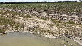 Foto de El presupuesto para seguros agrarios en 2018 asciende a más de 308 millones