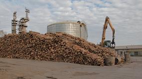 Foto de Avanza la certificación forestal