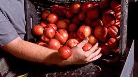 Foto de Acuerdo sobre las prácticas comerciales desleales en la cadena de suministro de alimentos
