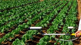 Foto de La eficiencia marca las VII Jornadas del Grupo de Trabajo de Fertilización de la SECH