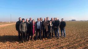 Foto de El ajo europeo reducirá la superficie de cultivo